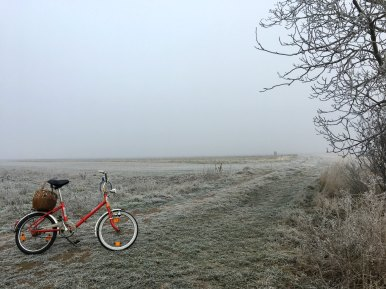 bike in frozen landscape iris gassenbauer