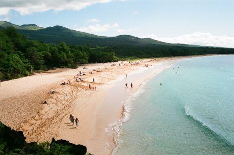 daily beach