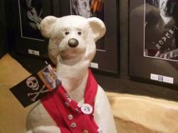 Teddy im ???