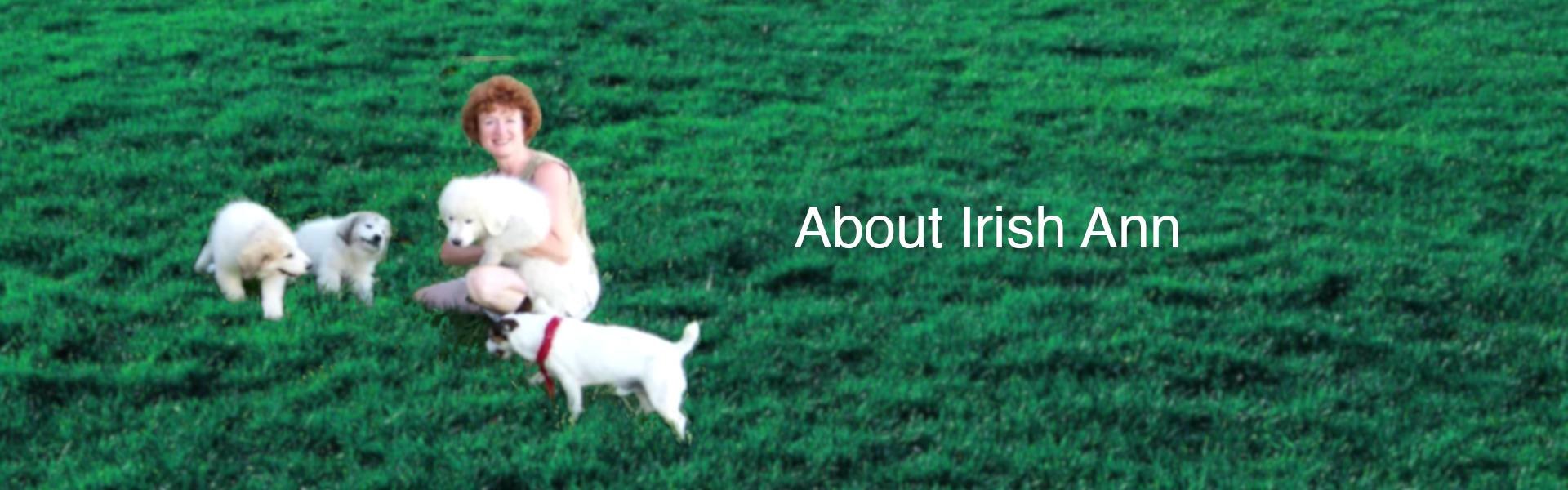 link to About Irish Ann