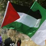 Occupied Territories Bill: It's time for Ireland to ban trade with Israel's illegal settlements