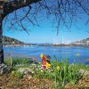 Beautiful photograph of Crosshaven