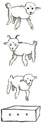 little prince sheep