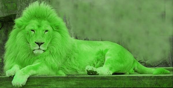 Lion-vert