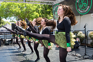 Silicon Valley Irish Fleadh 2014