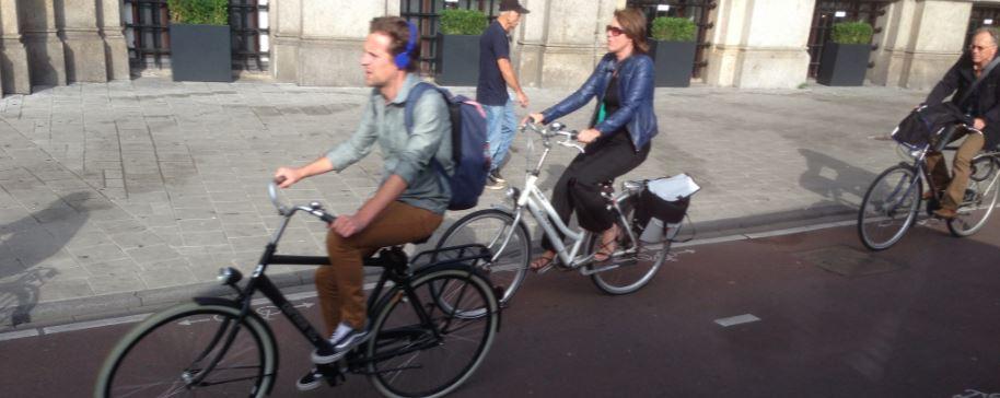 Dutch cycling crop