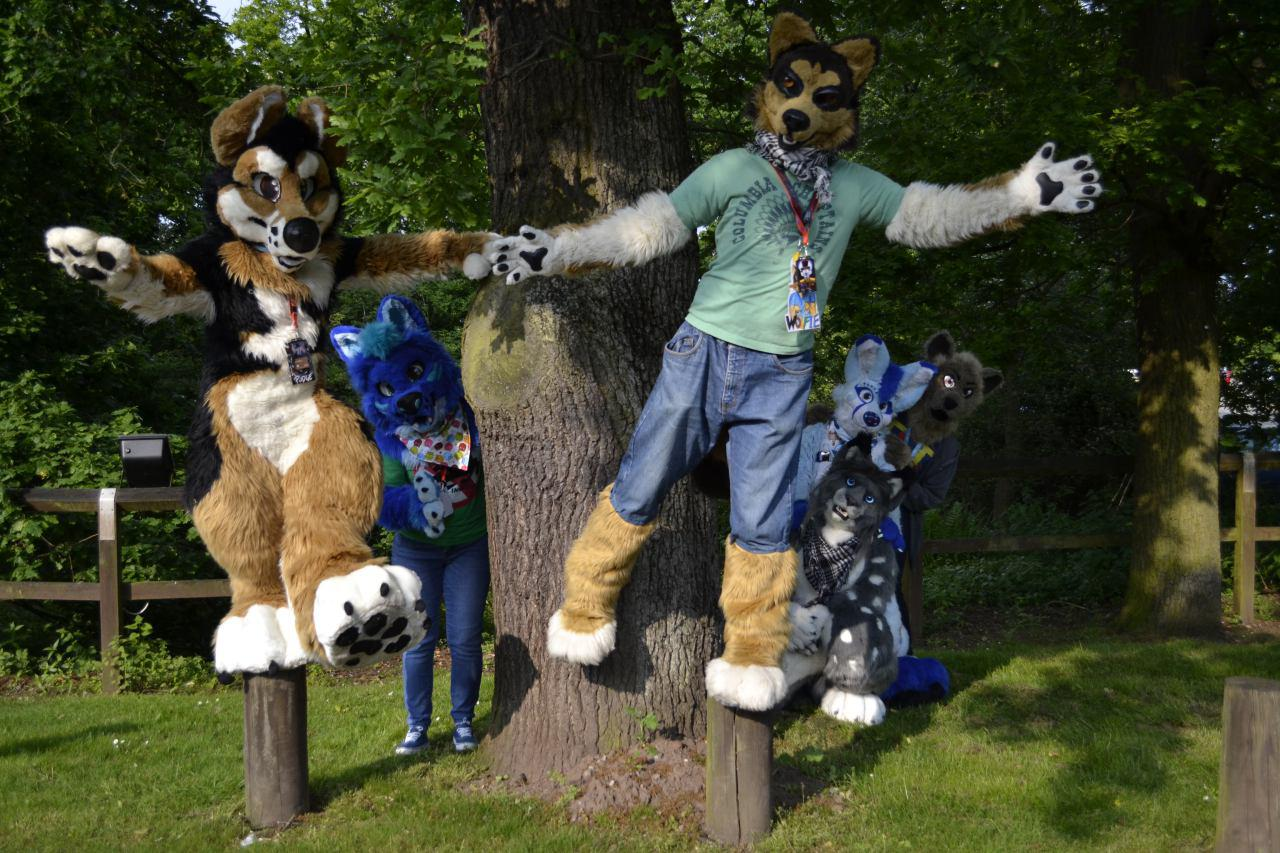 ConFuzzled Fursuit FurMeet May 2016