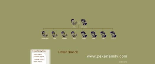 historical_website_design_family_tree