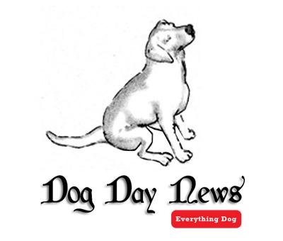 BRANDING: Dog Day News