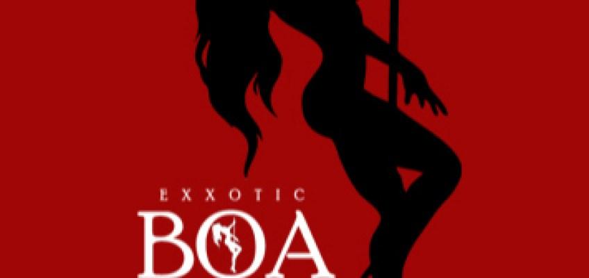 LOGO DESIGN: Exxotic Boa Clothing