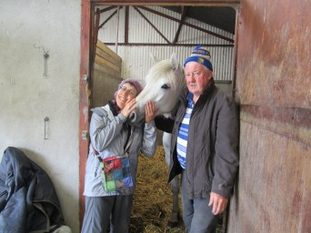 Pat and Independence, a champion Connemara pony