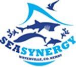 Sea Synergy Logo