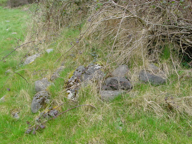 Some of the loose stone on the bank