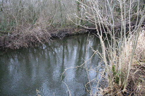 The canal towards Lough Nahincha