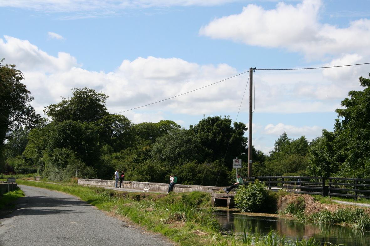 The Leinster Aqueduct