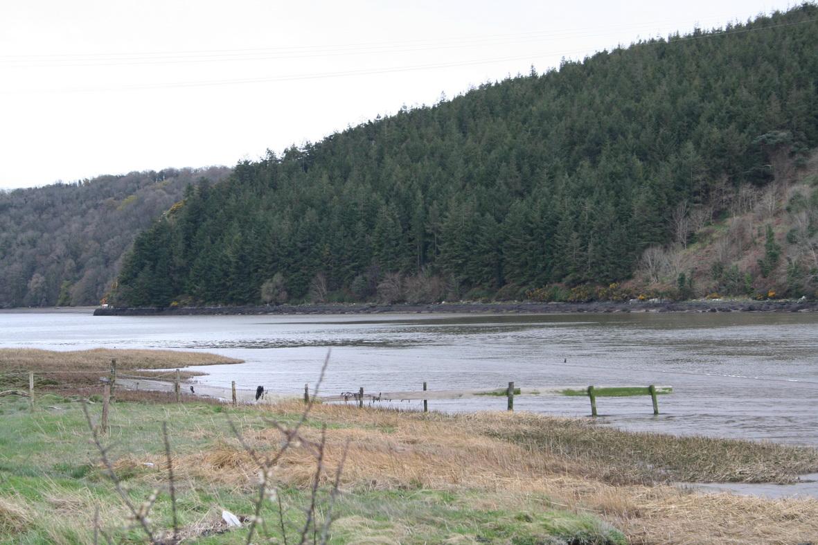 West bank downstream of Ballinlaw