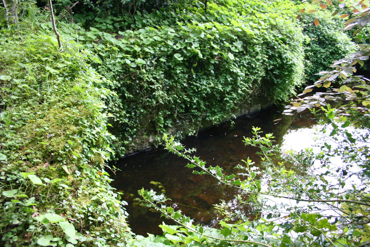 One outlet is under the greenery on the left, the other on the opposite bank