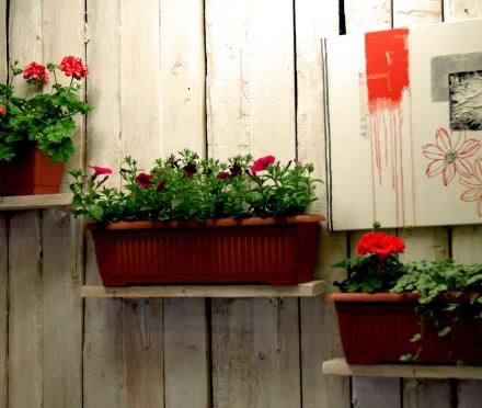 Balkonkiste Geranium und Surfinia