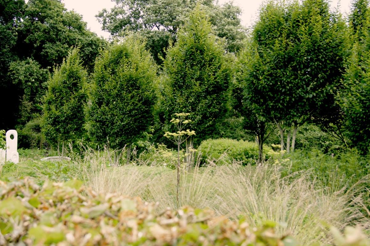 Der Schnittblumen-Garten, der Kiwi-Garten und der Hausgarten