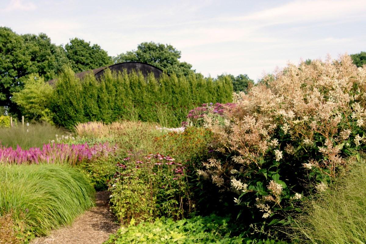 Dauerbrenner aus dem Sussex Prärie Garten