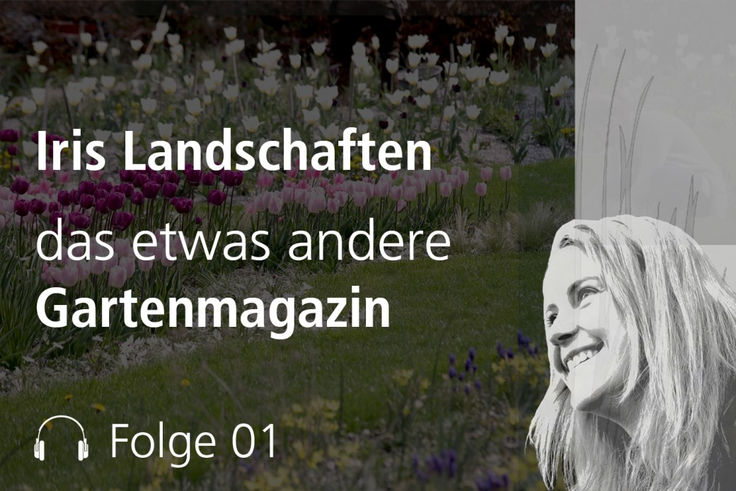Folge 1 - Podcast - Iris Landschaften