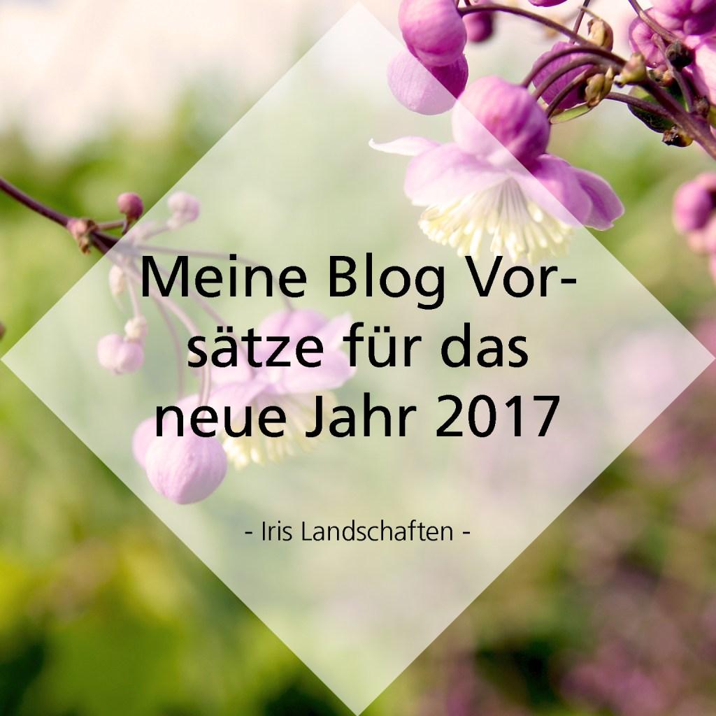 Meine Blog Vorsätze für das Jahr 2017