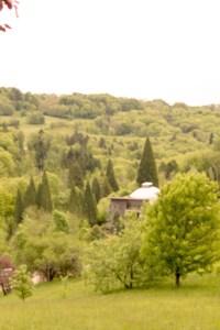 Arboretum Aubonne
