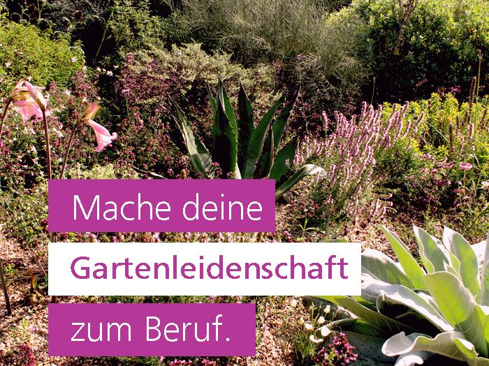 Ausbildung Gartengestaltung