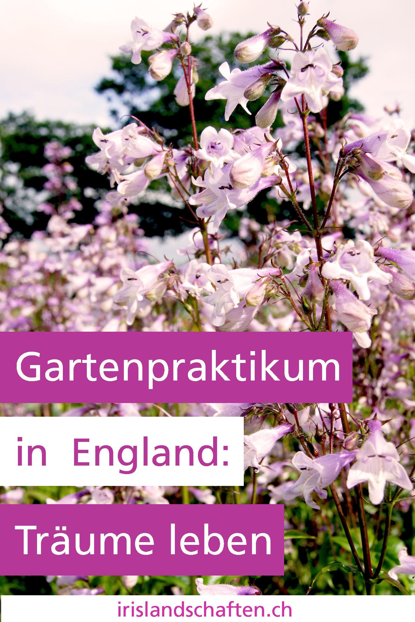 Gartenpraktikum in England Gartengestaltung