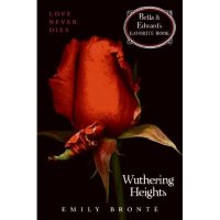 """A Perfect Misanthropist's Heaven"": Taking on Wuthering Heights"
