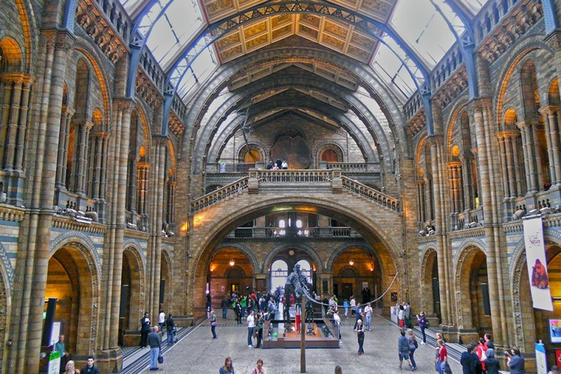 Natural History Museum | London for free: places to visit and things to do