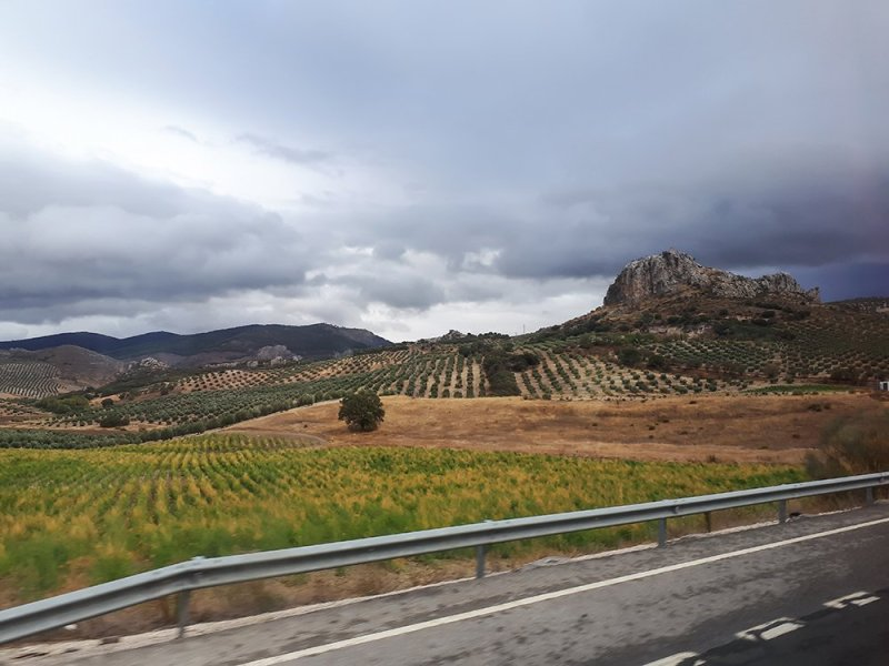 3 Weeks of Solo Travel in Spain, Part 3: 3 Days in Granada | The road between Cordoba and Granada