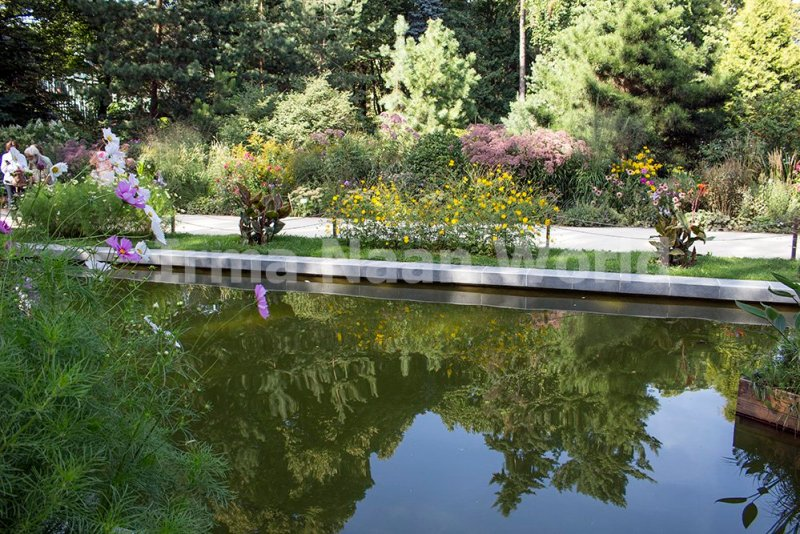 Moscow pictures: stunning photos of Moscow   Aptekarsky ogorod garden