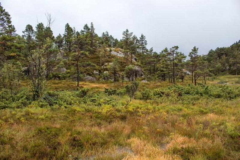 Preikestolen hike | Views along the trail to Preikestolen
