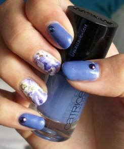 blaue Blümchen bps (6)