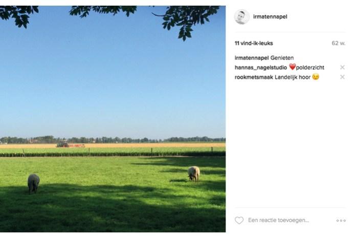 instagram_landelijk
