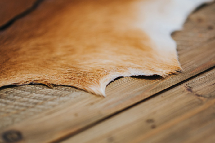 Gebruikte Houten Vloer : Tips voor bescherming van je houten vloer irma ten napel