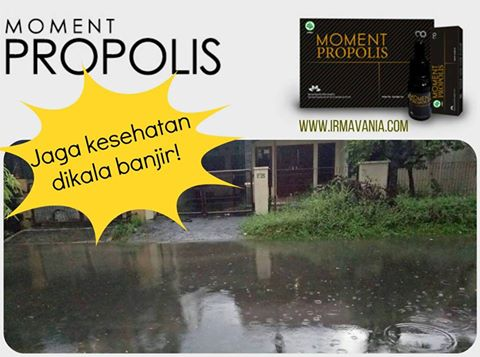 Cara Menjaga Kesehatan Propolis Moment Surabaya Irma Vania Oesmani