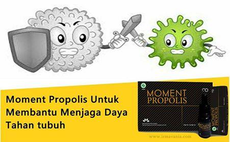 Beli Propolis di Surabaya. Jual Propolis di Bandung. Cara Propolis di Jakarta