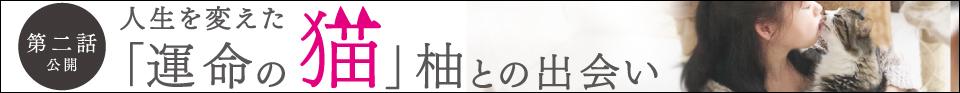 第二話:秋田未来思考美術館