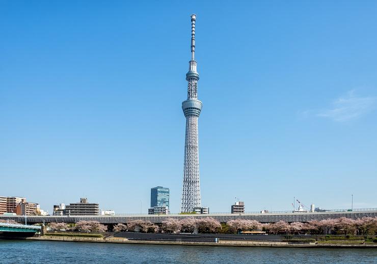 photo-i00181-02
