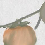 photoshopで水墨画風の柿を描いてみましたメイキング
