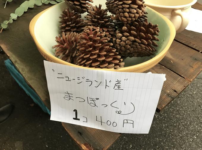 東京蚤の市まつぽっくり