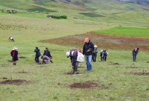 Paysans de la communauté de CATAC en train de planter des arbres