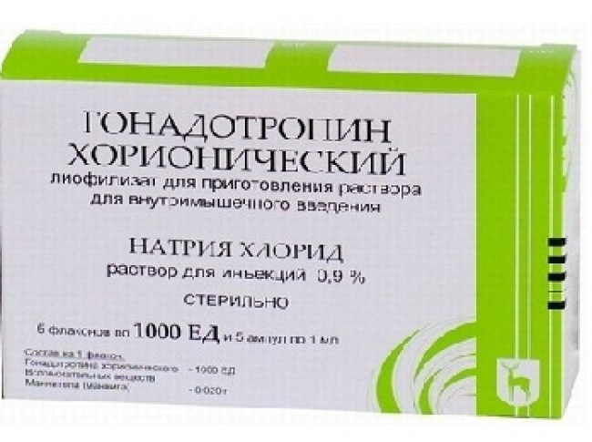 Double Your Profit With These 5 Tips on бодибилдинг твой путь