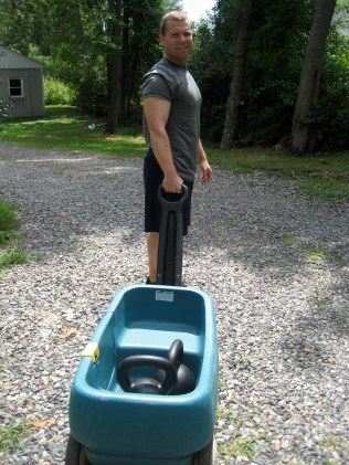 Kettlebells in a Cart