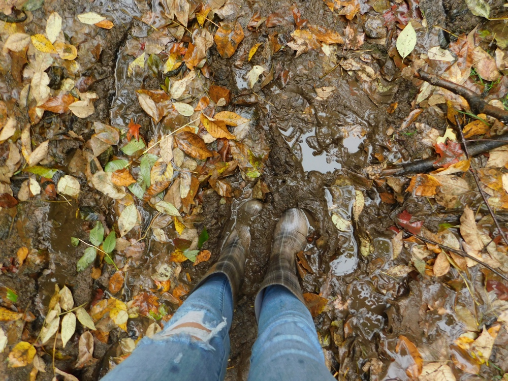 Muddy conditions at Corrigan's Lookout
