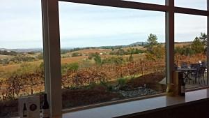 Iron Hub Winery New Tasting Room Inside View