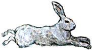 Iron Rabbit food & drink menu