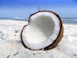 Healthy Coconut Oil -fresh coconut